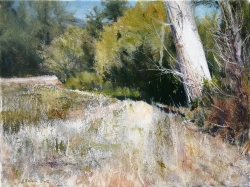 Lane Hall, Creekside III, Oil on Canvas, (Contact for Purchase)