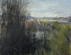 Lane Hall, Early Spring, Oil and Graphite on Linen, (Contact for Purchase)