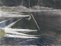 Lane Hall, Bleached Logs, Oil and Graphite (Sold)