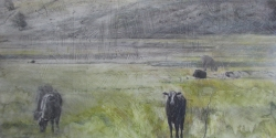 Lane Hall, High Country Livestock, Mixed Media (Sold)