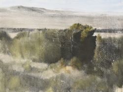 Lane Hall, High Desert Textures, Watercolor (Contact for Purchase)
